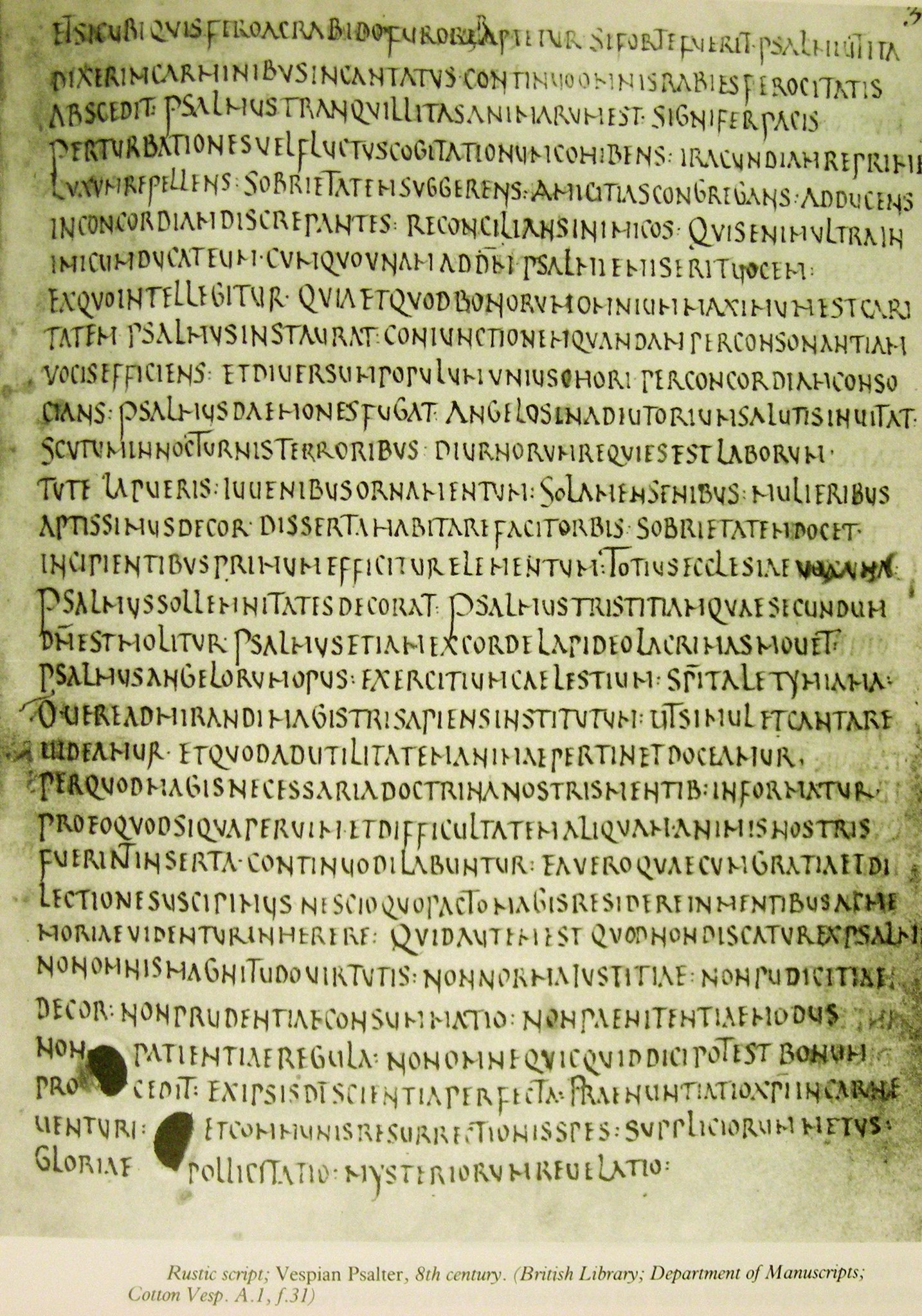 Manuscrit en écriture Rustica - British Library